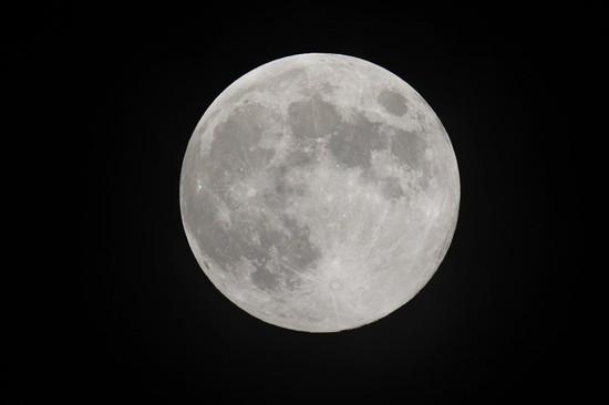 moonchushu2013.jpg
