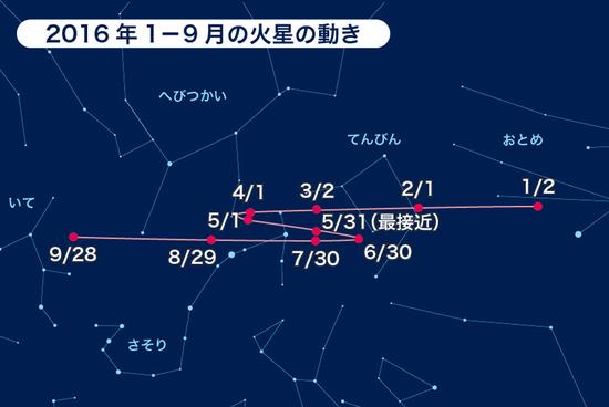 20160531_kasei1.jpg
