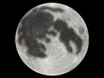 moon_kani.jpg