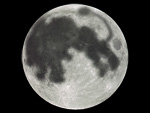 moon_lion.jpg